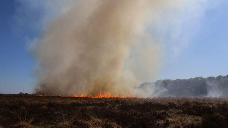 De heidebrrand op de Ginkelse Heide bij Ede - Foto: ©Omroep Gelderland