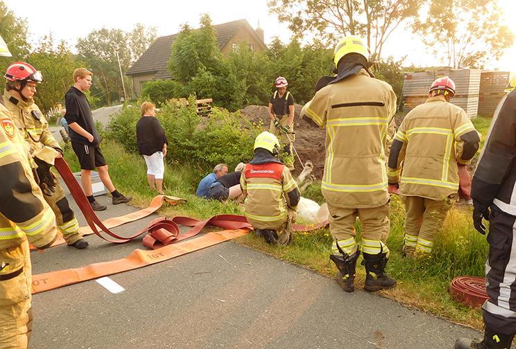 Zo troffen wij het getroffen paard aan, omringd door brandweermannen - Foto: ©Louis Fraanje