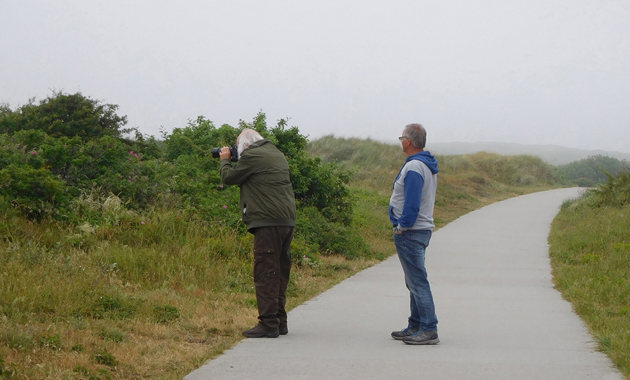 Geduldig wachten als je broer even een vogeltje op de foto wil zetten - Foto: ©Fransien Fraanje