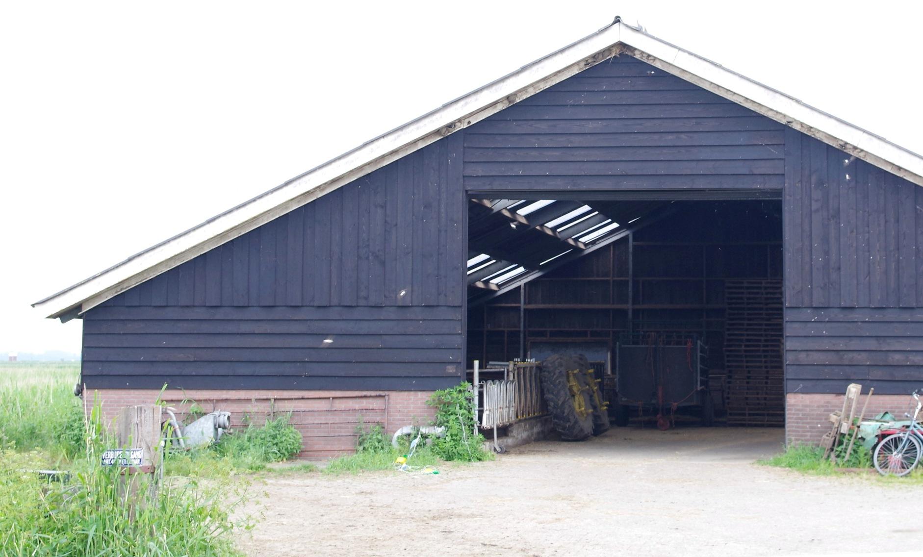Op het melkveebedrijf Ark staan twee grote schuren: boerenzwaluwen nestelen binnen en huiszwaluwen buiten tegen de gevel – Foto: ©Gerrit de Graaff