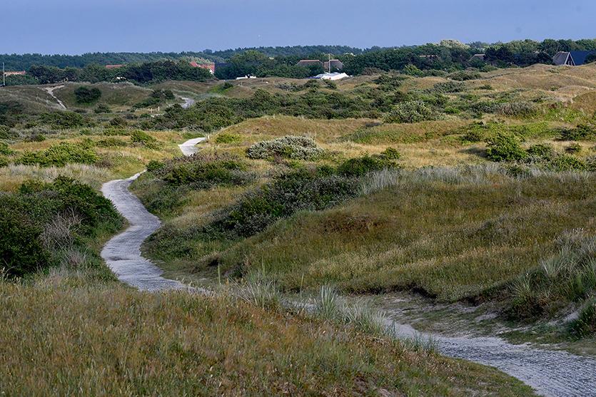 Heerlijk wandelen door de Eierlandse Duinen – Foto: ©Fransien Fraanje