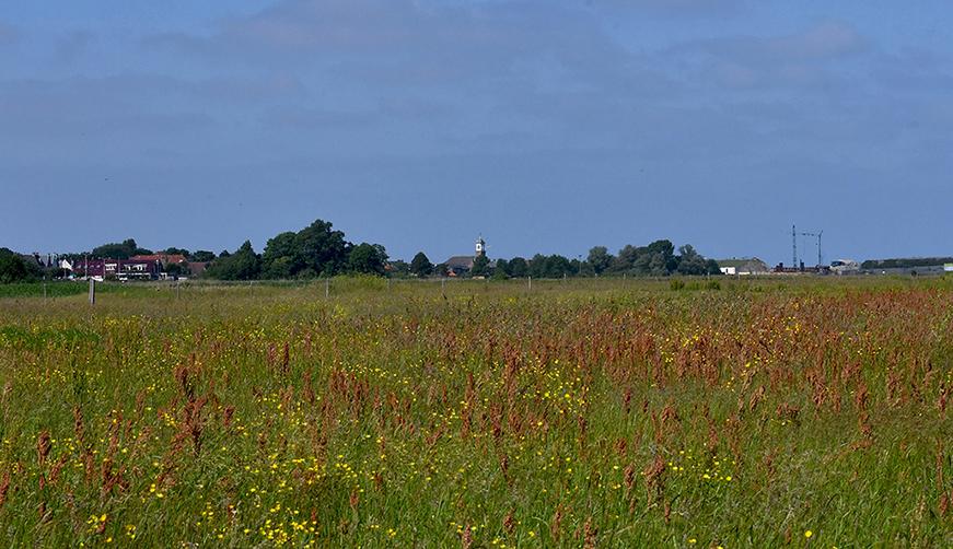 1 Foto 1 Noordwaarts deel 44 Landschap Cocksdorp