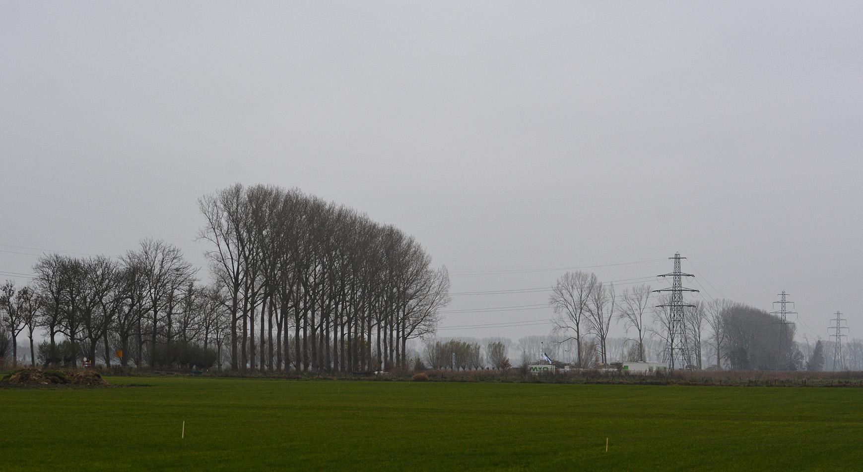 Veensteeg vanaf de Werftweg kaal
