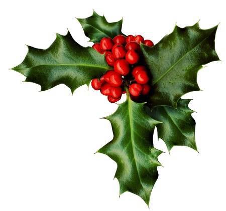 Kerst tak 2018 - De Veluwenaar