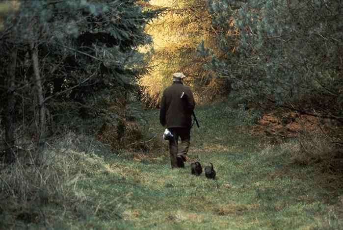 Arnold v d Wal met honden in het bos  Foto: ©Herman Stegeman