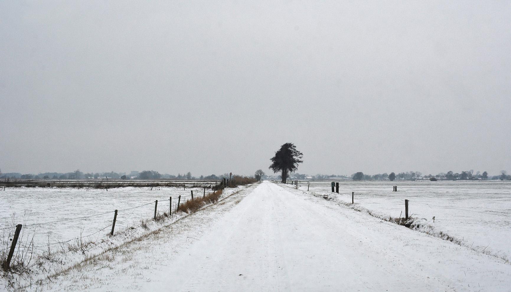 De weilanden liggen onder een witte deken – Foto: ©Louis Fraanje