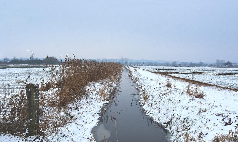 Tussen de twee weilanden ligt een afvoersloot – Foto: ©Louis Fraanje