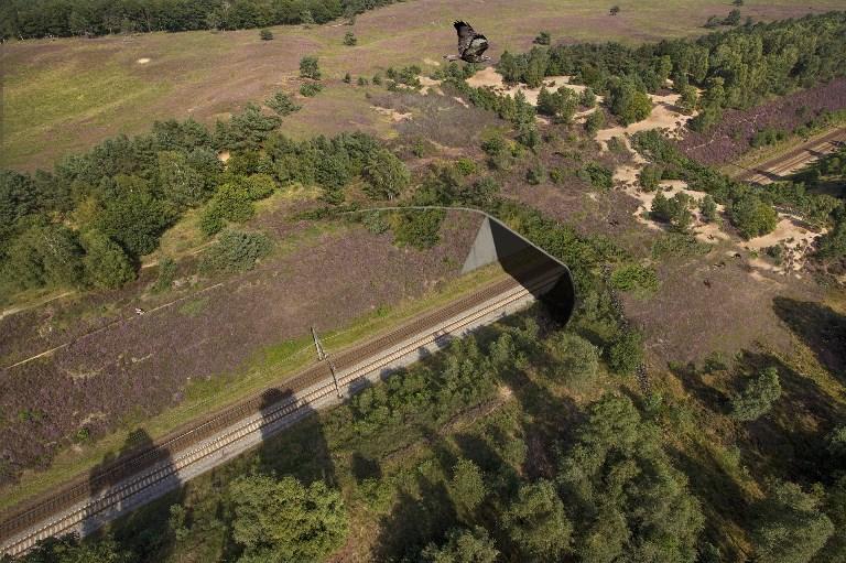 """Overzicht van het uiteindelijke project natuurbrug """"Asselsche Heide"""" - Afbeelding: ©ProRail"""