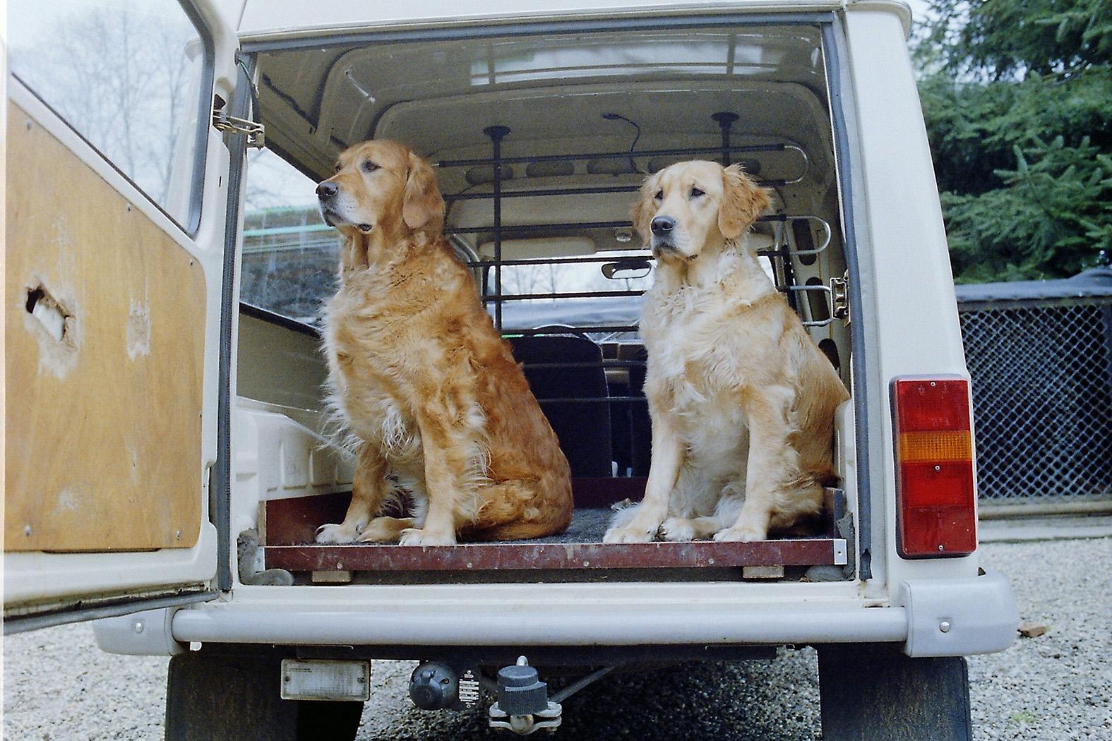 Amber en Rambo in het dienstautootje van Eb Curré – Foto: ©Yvonne Arentzen