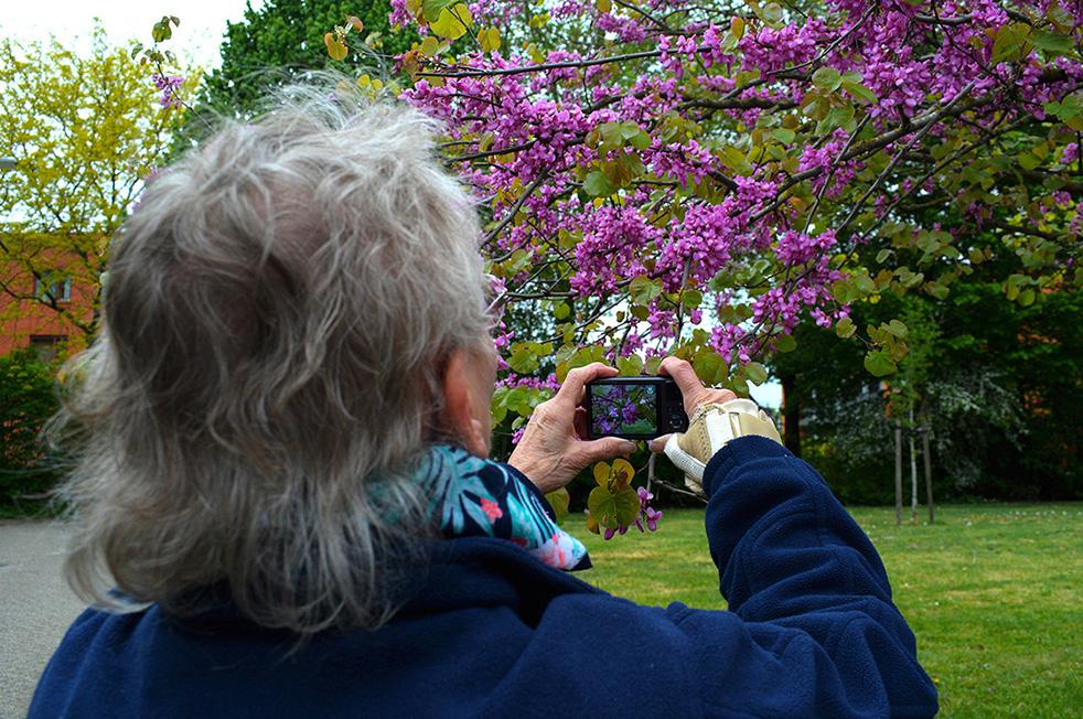 Met de kleine camera maak ik een close-up - Foto: ©Louis Fraanje