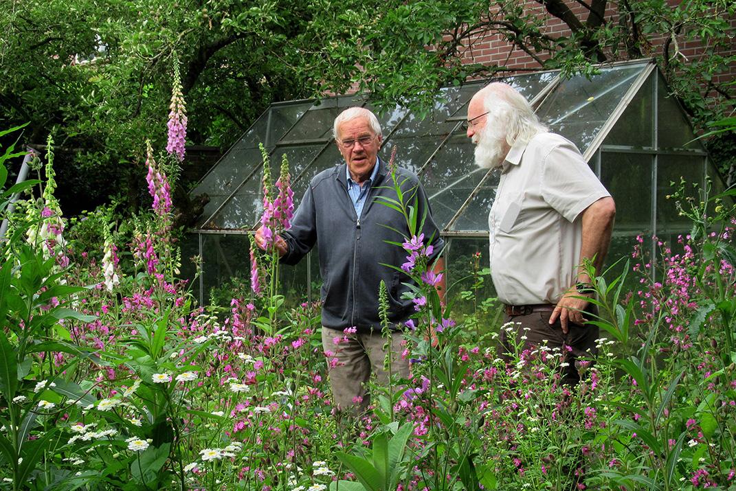 De natuur in... met Gerrit de Graaff en Louis Fraanje, nu in de achtertuin - Foto: ©Fransien Fraanje