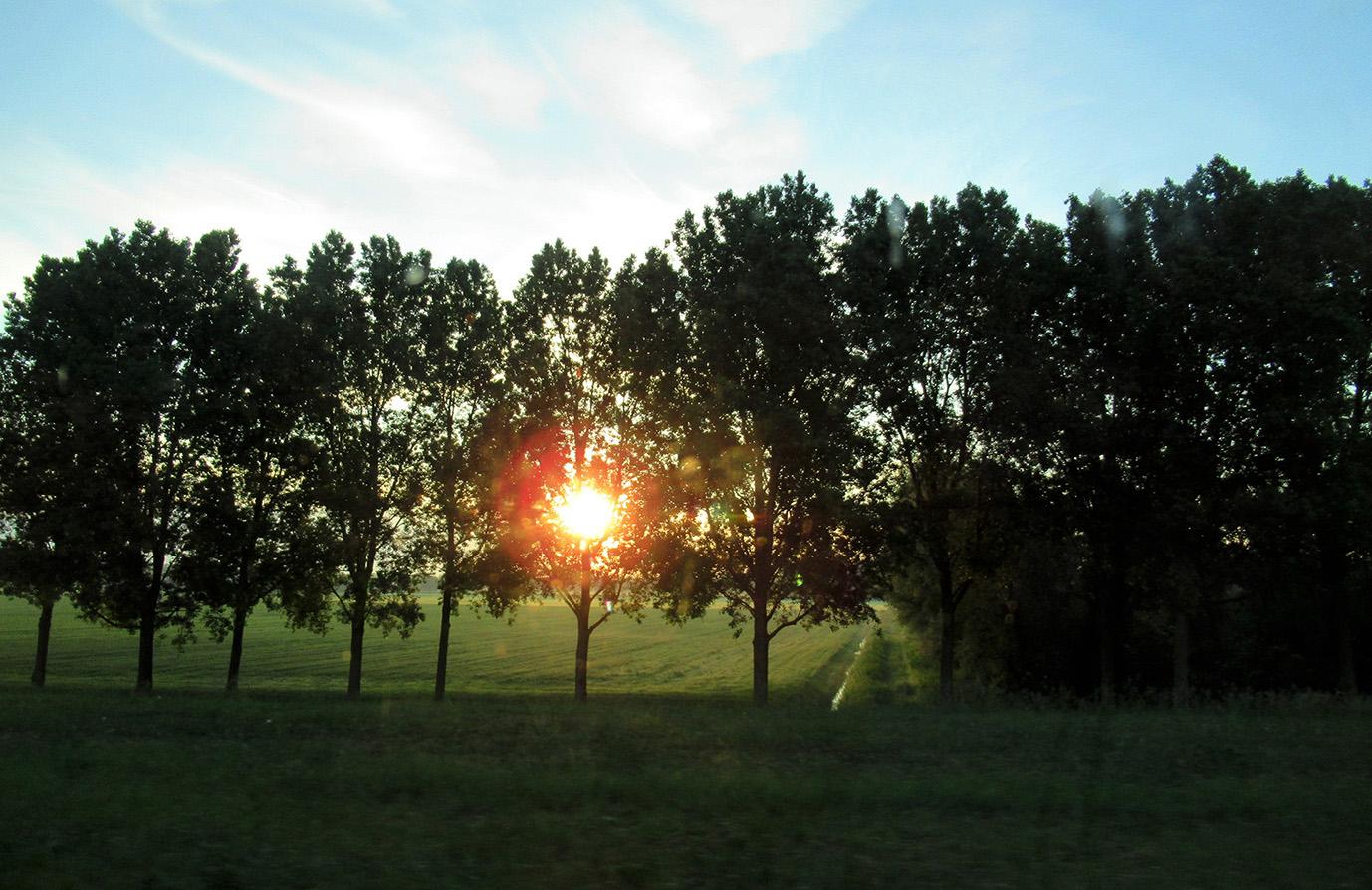 Het is nog vroeg in de polder als de zon opkomt - Foto: ©Fransien Fraanje