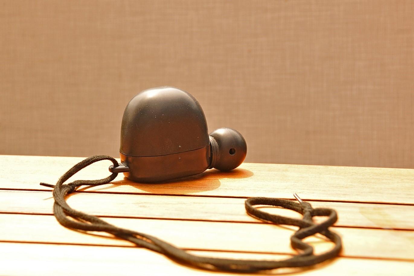 De oude- vertrouwde BUTTOLO als ree fiep (Lees: reeënlokker) - Foto: ©Ton Heekelaar