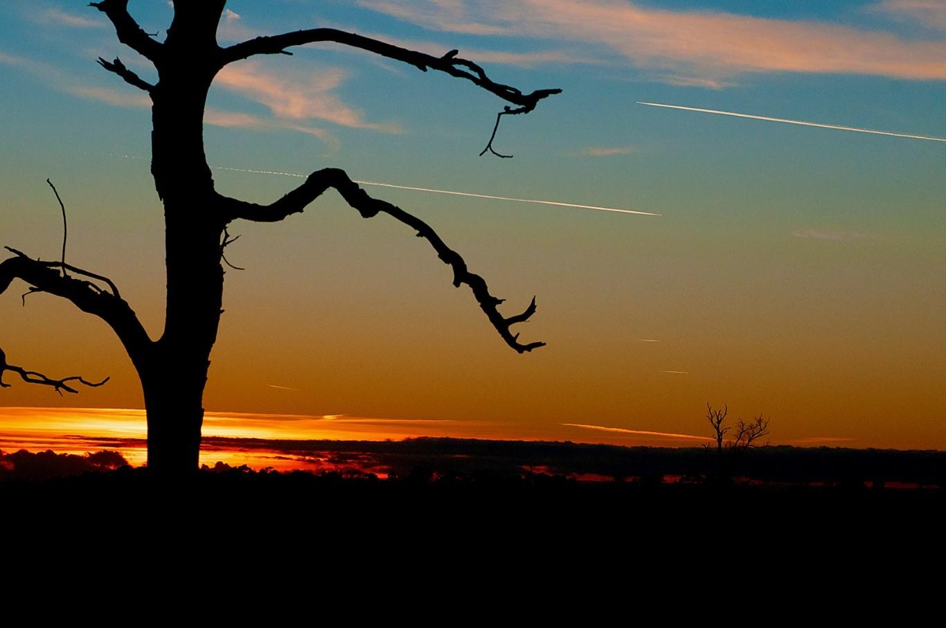 De Noordelijke grens van de Deelensche-Wasch bij zonsondergang- Foto:©Ton Heekelaar.