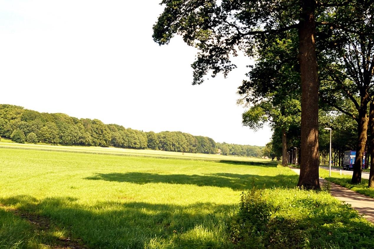 Foto boven geeft een redelijk overzicht van het bouwland Landgoed Biljoen (GLK). Thans kunnen die landbouwgronden door dam- en roodwild onbelemmerd worden betreden. Rechts: zichtbaar het aangrenzend rijwielpad en Provincialeweg tussen Velp & Rheden. Links: majestueuze contouren van de zuidgrens Nationaal Park Veluwezoom(NM) dat deel uitmaakt van het Veluwemassief- Foto: ©Ton Heekelaar