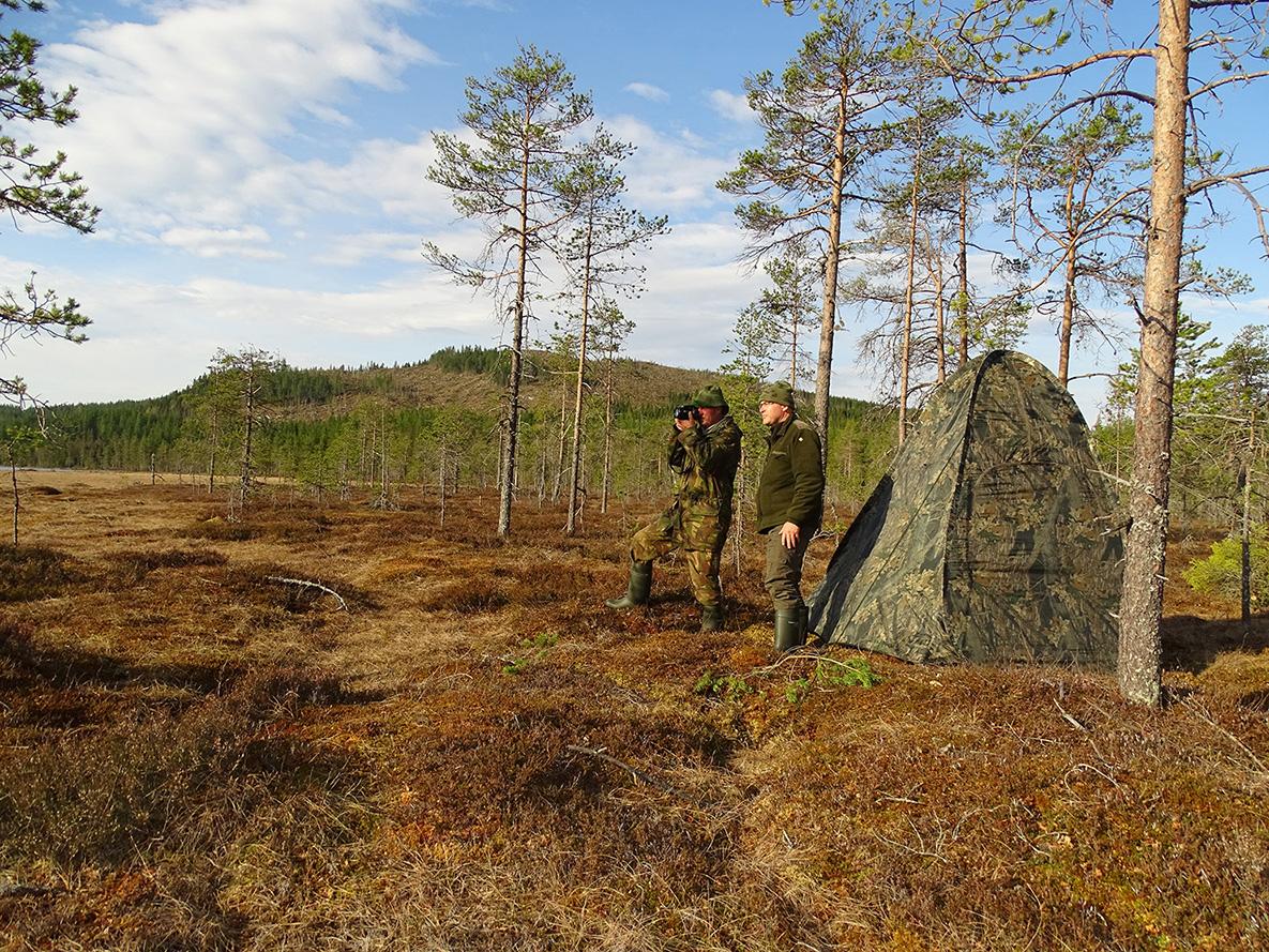 Samen voor de schuiltent bij de korhoenderbaltsplaats in Zweden - Foto: ©Leo Verschoor