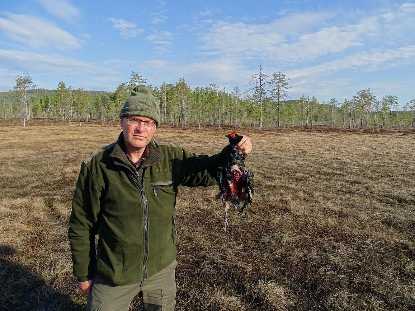 De korhaan die geslagen was door een havik op de baltsplaats - Foto: ©Leo Verschoor