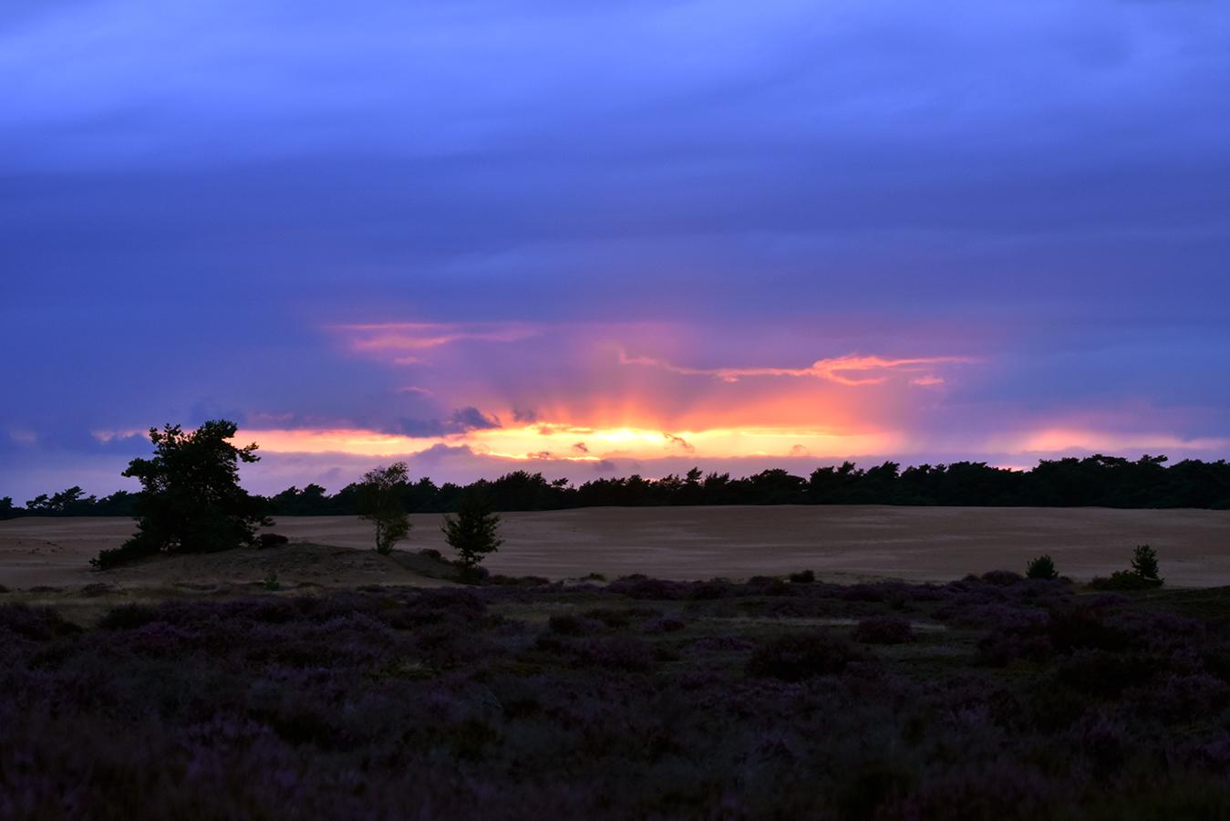 Een schitterende zonsondergang boven het Middenzand op de Hoge Veluwe - Foto: ©Louis Fraanje