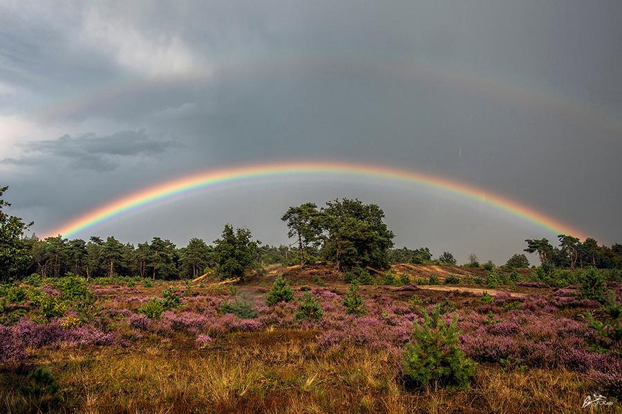 Kleurrijke regenboog boven de Veluwe - Foto: ©Jan Koops