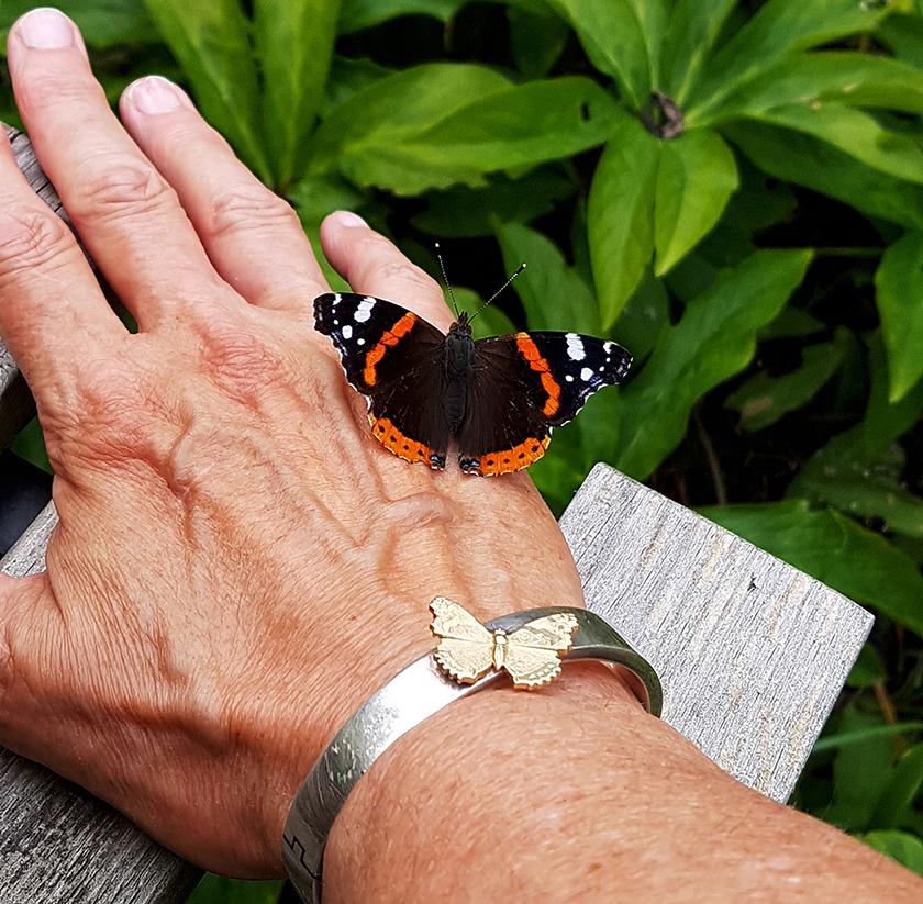 De Atalanta vlinder zit rustig op de hand met de armand waarop zijn evenbeeld - Foto: Eigen foto
