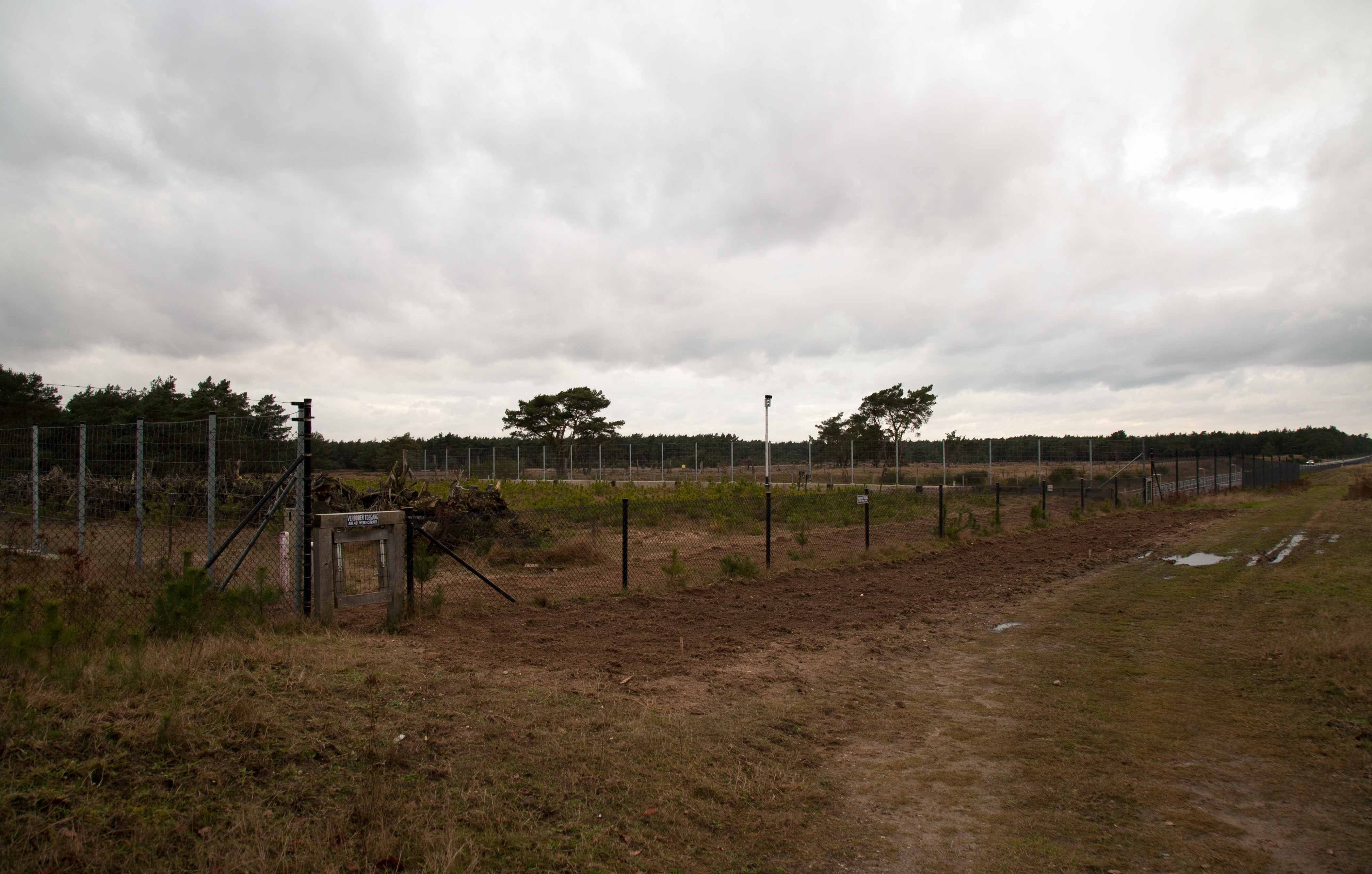 Het verlaagde hek op ecoduct Oud-Reemst, hier gezien vanuit het Park op 21 december 2015, was aan weerszijden voorzien van zandbedden, die regelmatig aangeharkt werden om nieuwe sporen te kunnen 'vangen'. Uiteraard werden voor de harkpartij de reeds aanwezige sporen geïnventariseerd. Hierdoor konden onderzoekers zien of en zo ja welke dieren tussen De Hoge Veluwe en Nieuw-Reemst hadden gelopen – Foto: ©Yvonne Arentzen