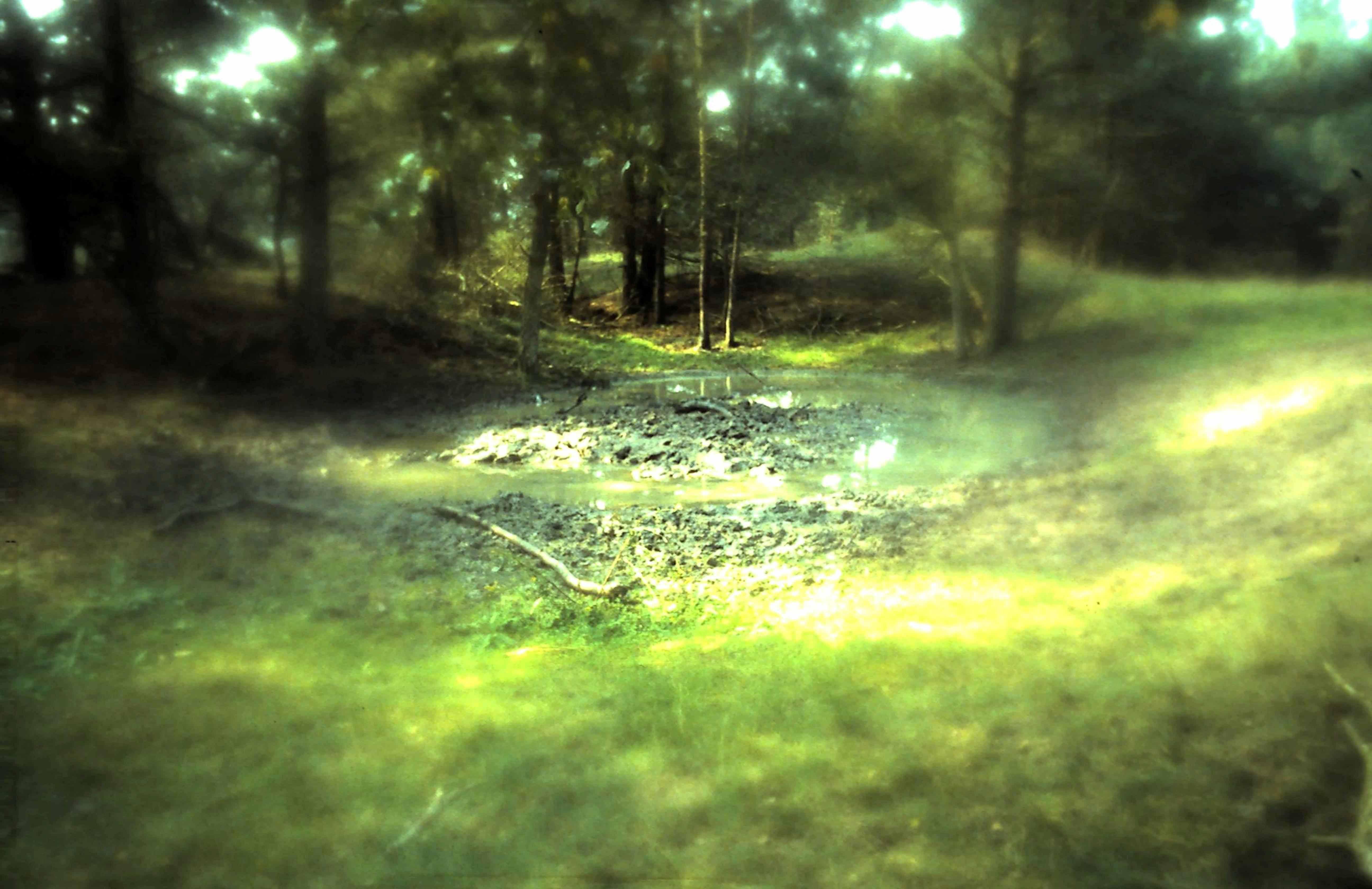Zo zen gewassen in het waterplasje – Foto: ©Yvonne Arentzen