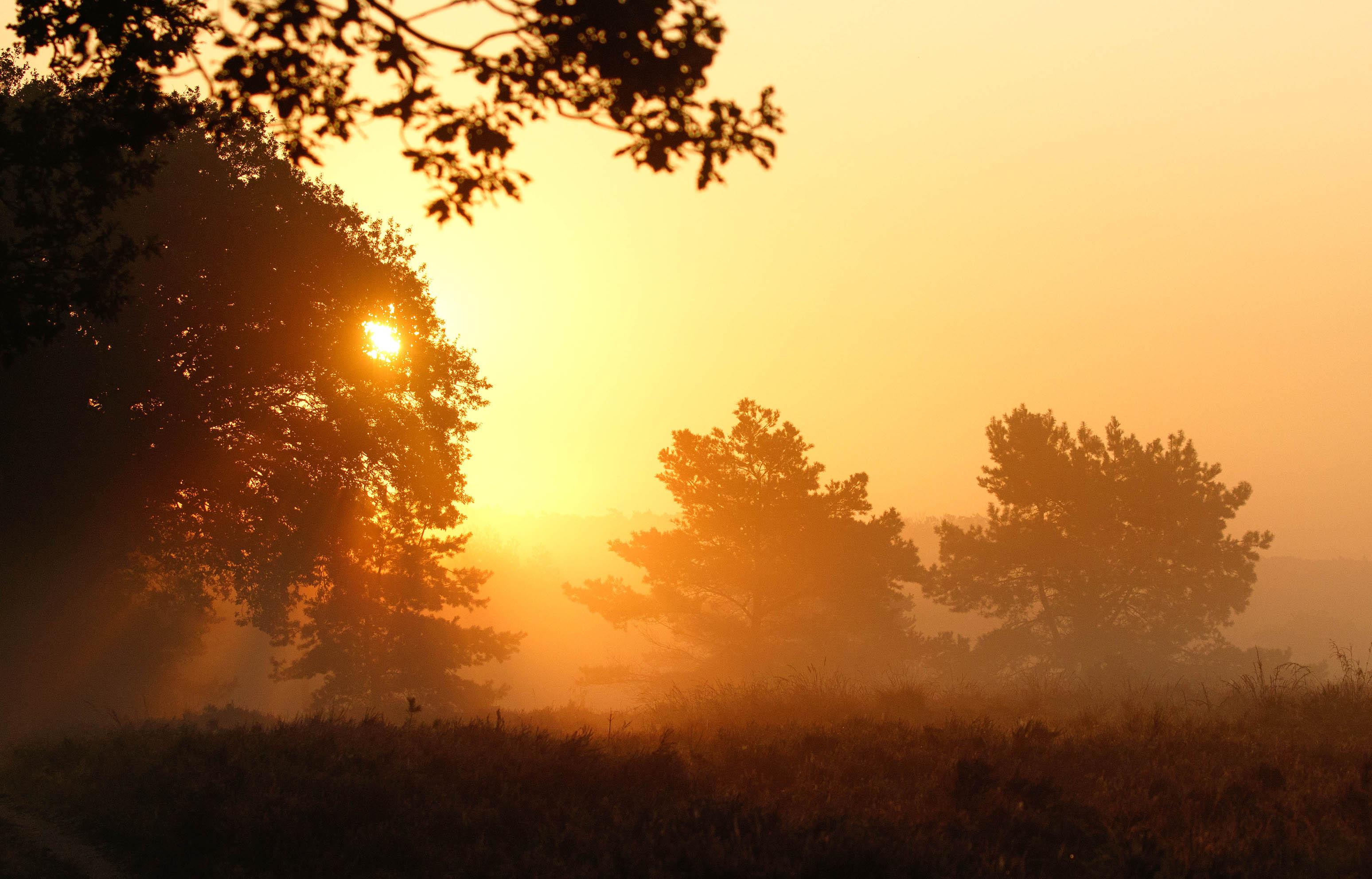 De opkomst van de zon geeft fabelachtige kleuren en mooie effecten - Foto: ©