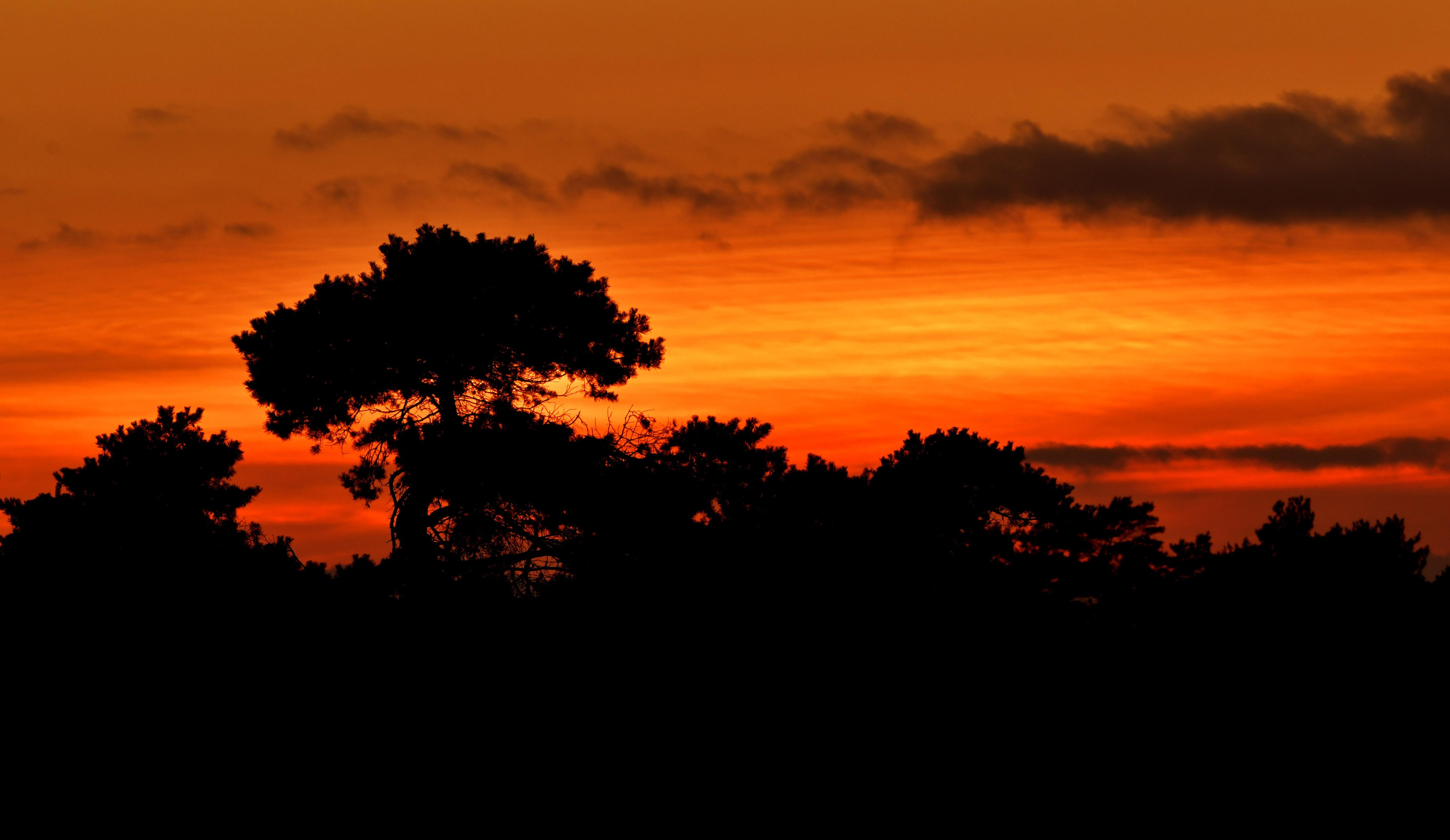 En... een schitterende zonsondergang aan de overkant - Foto: ©Louis Fraanje