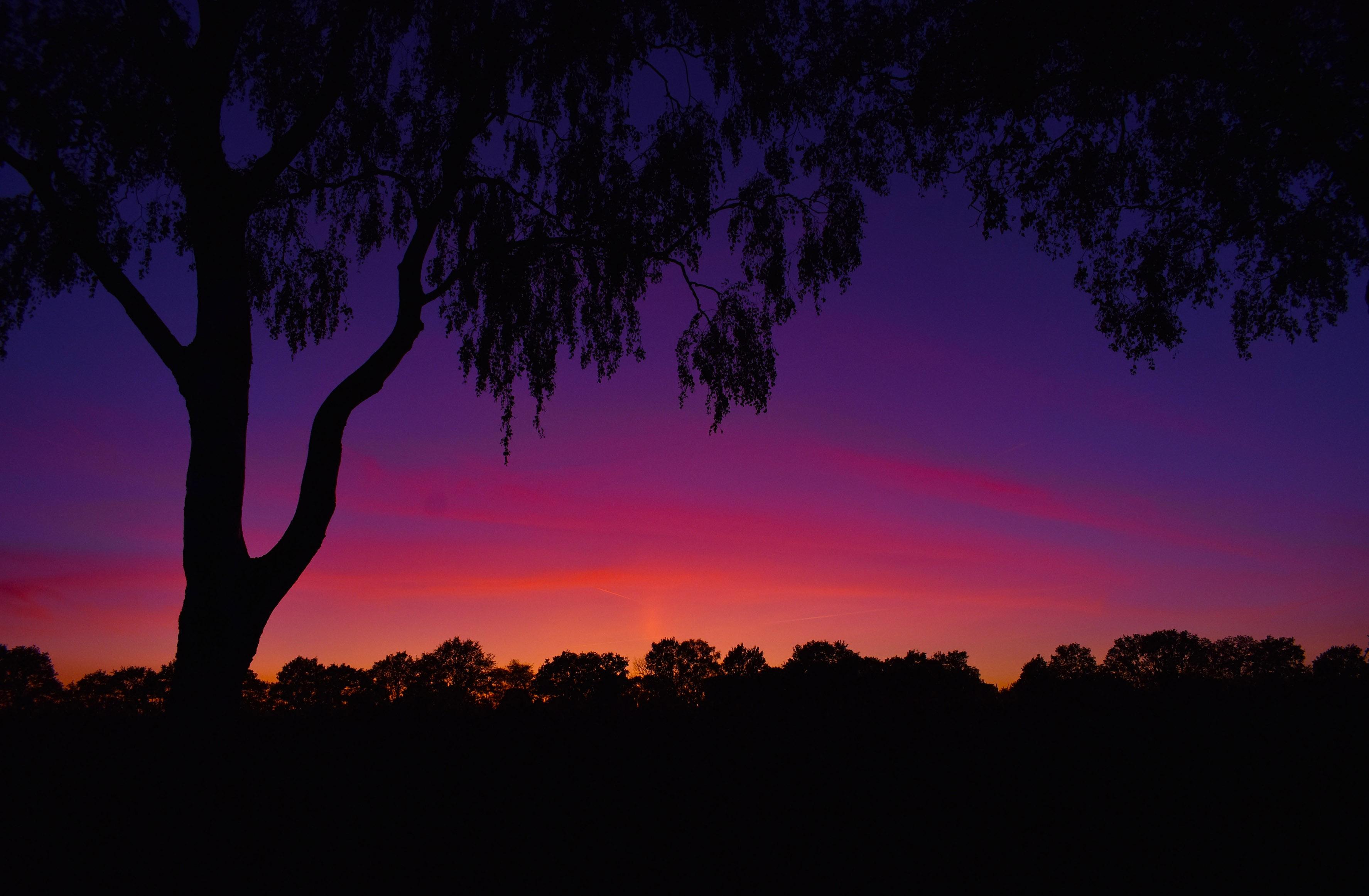 Later bij het Roekelse Bos kleurde de avondhemel nog mooier - Foto: ©Louis Fraanje