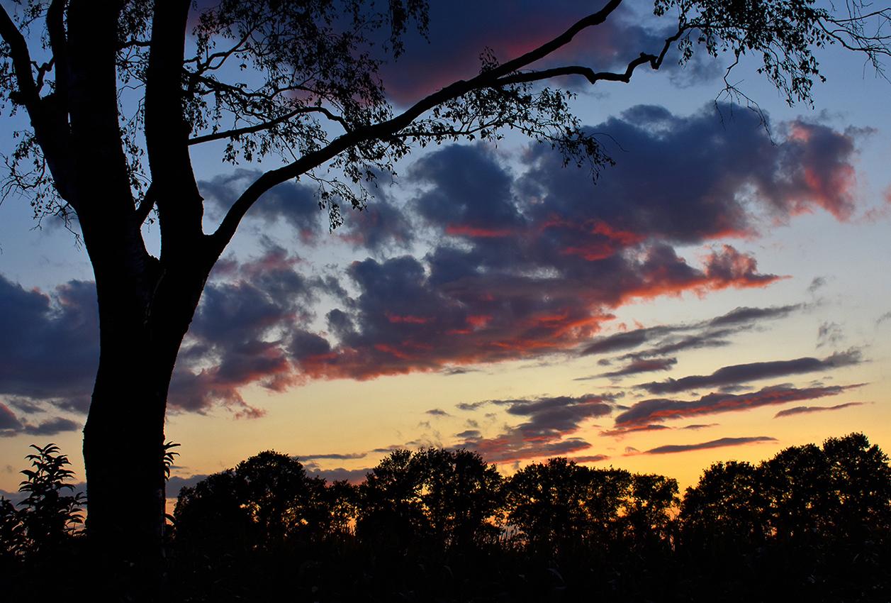 Er verscheen een kleurrijke wolkenlucht aan de avondhemel - Foto: © Louis Fraanje