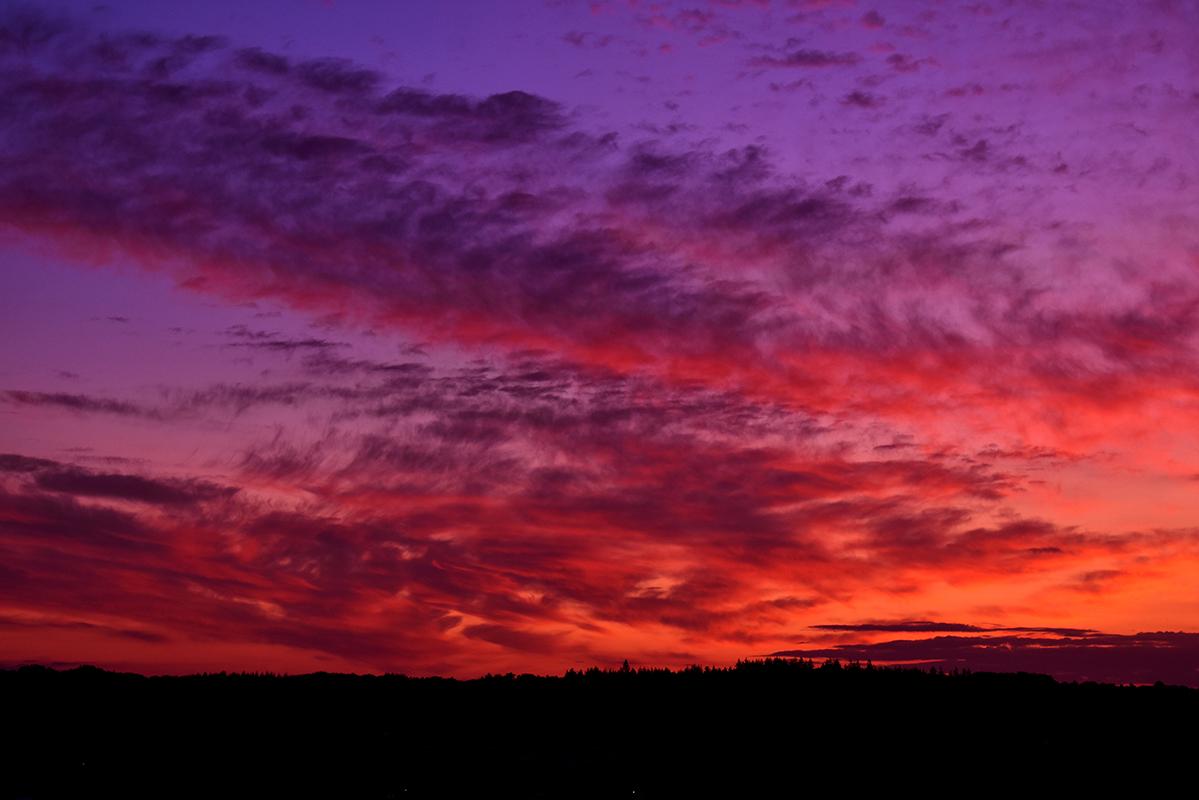 Een prachtig vlammend morgenrood aan de hemel boven de Veluwe - Foto: © Louis Fraanje