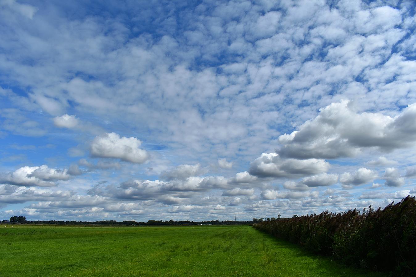Wat een ruimte hier in het Rauwe Veld met zijn schitterende wolkenluchten – Foto: ©Louis Fraanje