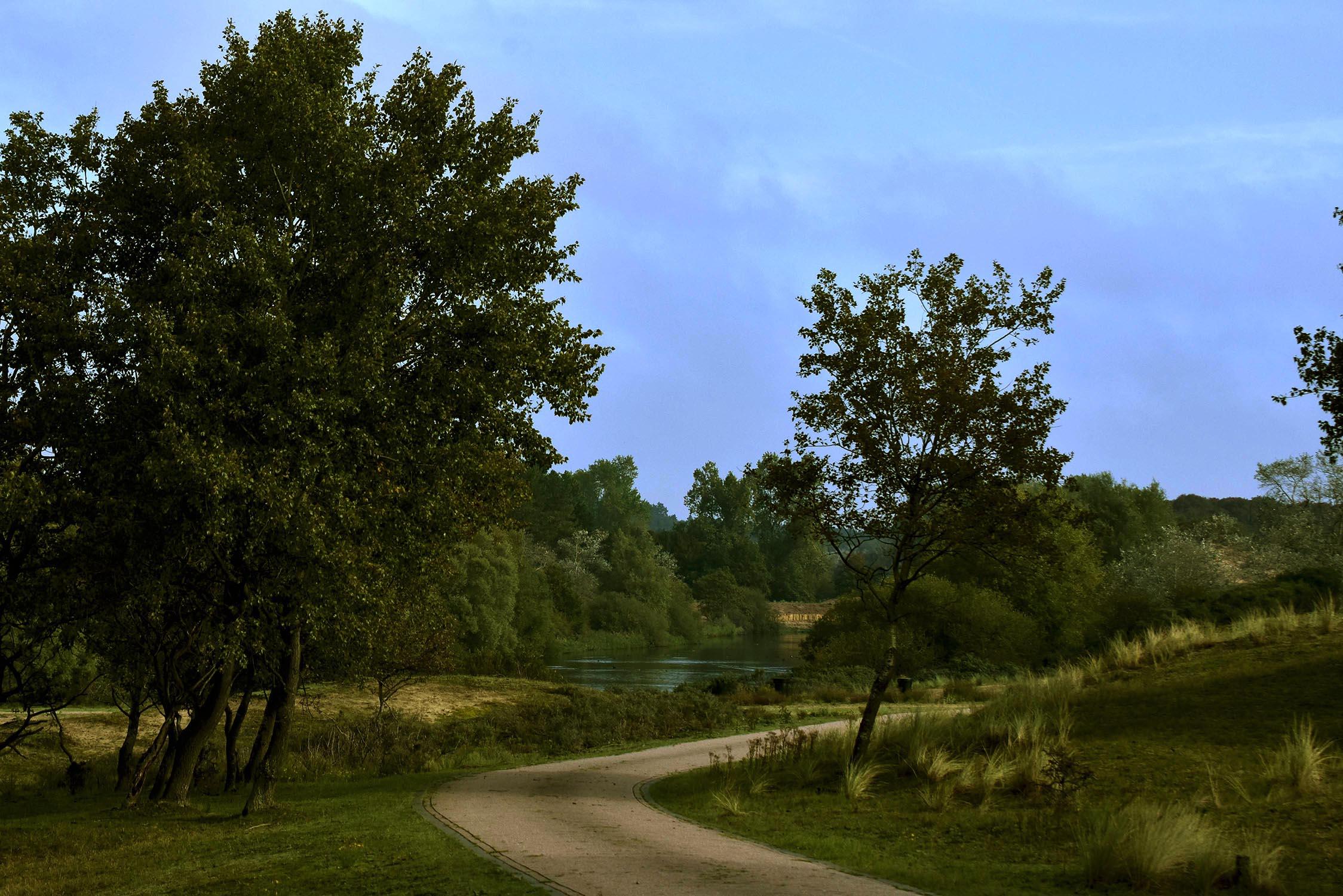 Een mooi doorkijkje vanaf de weg op de vijvers - Foto: ©Louis Fraanje
