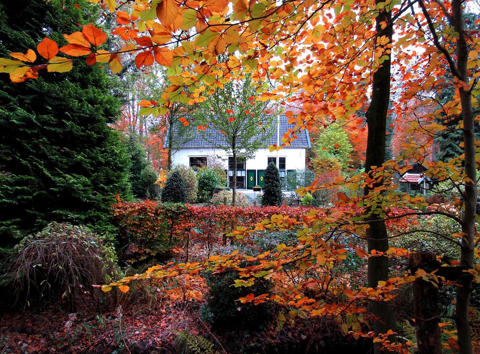 """Boerderij """"De Molen"""" omgeven door herfstkleuren – Foto: ©Fransien Fraanje"""