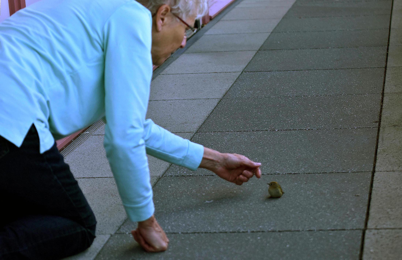 Fransien gaat zich ontfermen over het kleine vogeltje – Foto: ©Louis Fraanje