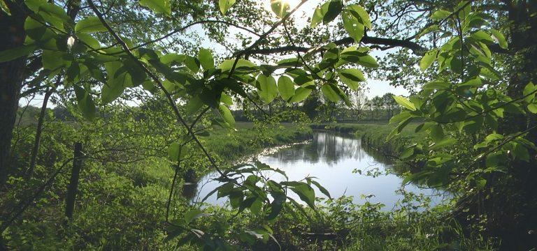 Bijna geruisloos glijdt het grillige water door het Drentse landschap… - Foto: ©Nighthawk Productions