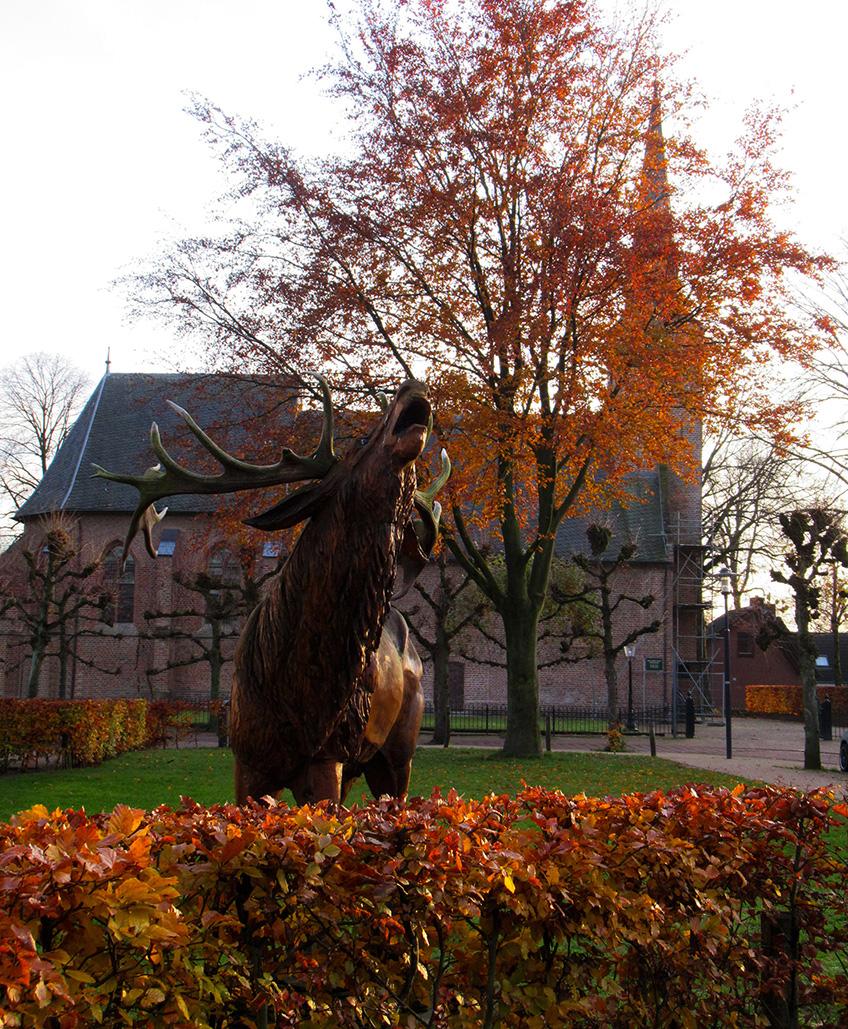 Het edelhert op het grasveldje naast de Ericaschool, met op de achtergrond de Hervormde Kerk - Foto: ©Louis Fraanje