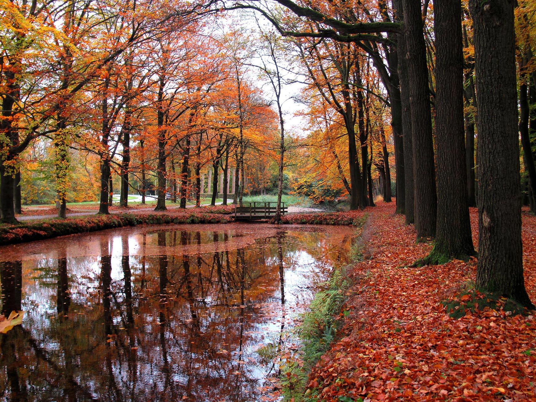 Waterpartij langs de Mei-allee en Lonapark in Loenen op de Veluwe – Foto: ©Fransien Fraanje