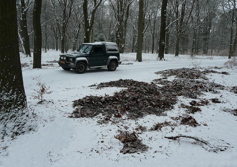 De zwijnen zijn rondom de jeep aardig aan het wroeten geweest – Foto: ©Louis Fraanje