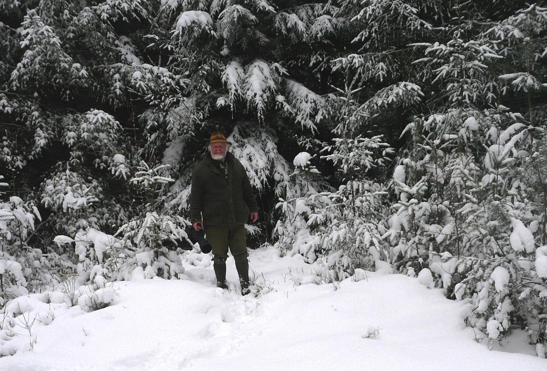 Heerlijk aan de wandel door het oude sparrenbos - Foto: ©Fransien Fraanje