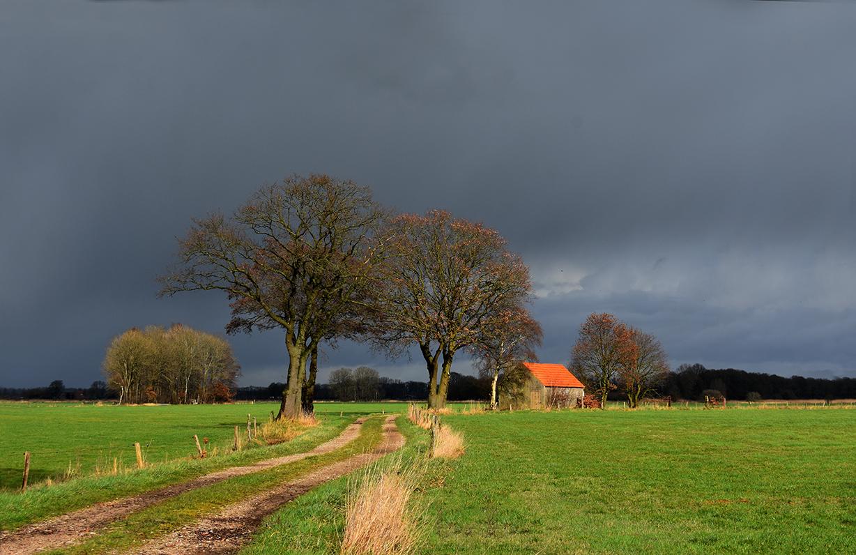 Licht en donker geven dit Veluwse boerenlandschap een extra dimensie - Foto: ©Louis Fraanje