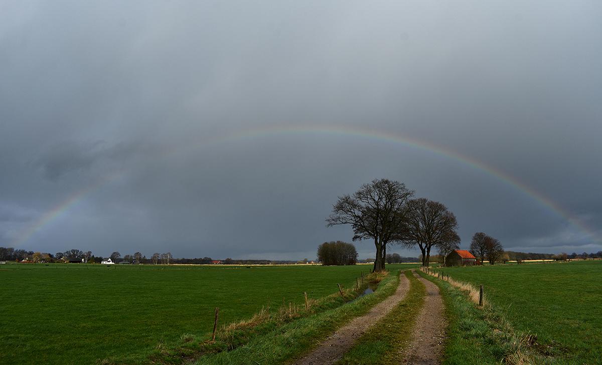 Een prachtige regenboog boven de Loenense Hooilanden op de Veluwe - Foto: ©Louis Fraanje