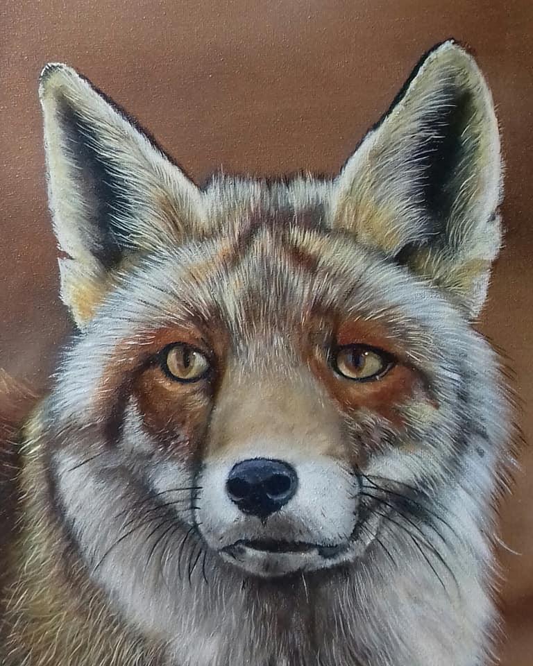 Een vos - Beeld: Willem Souverijn