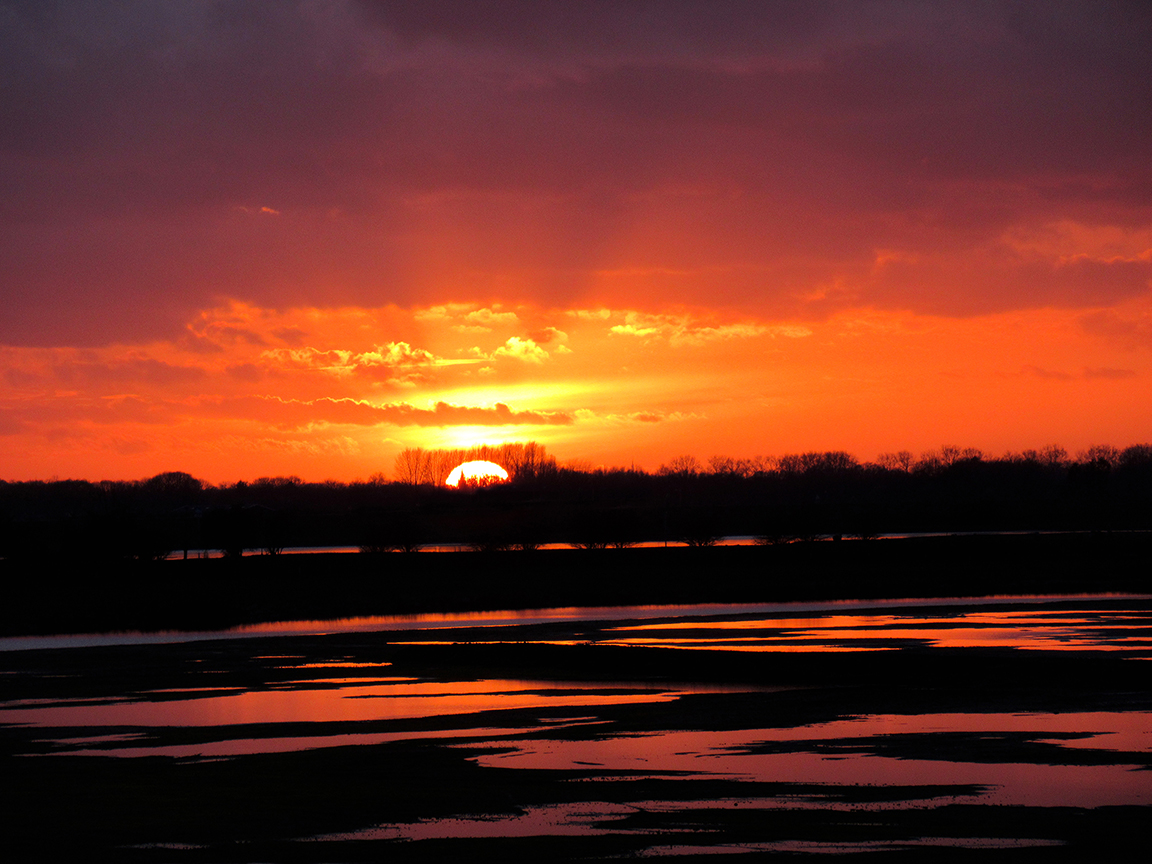 Aan de overkant van de Rijn verdween de zon langzaam achter de horizon - Foto: ©Fransien Fraanje