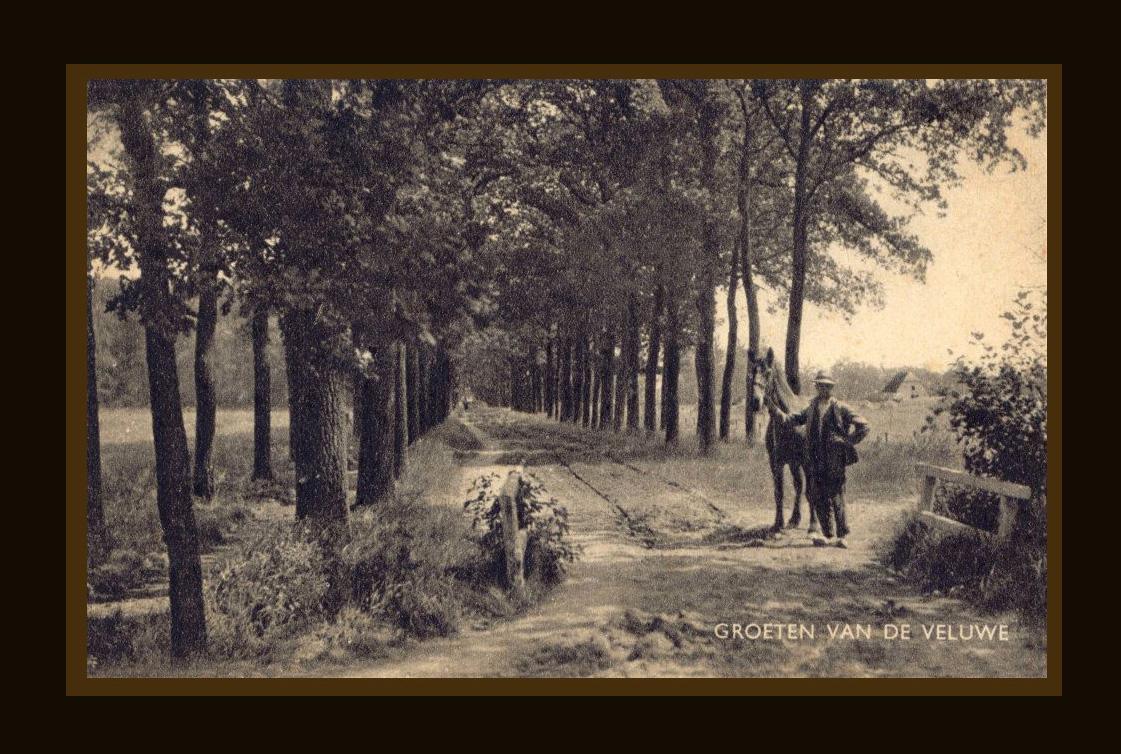 Wij denken dat de foto in de buurt van Loenen genomen is, maar zeker weten we het niet - Foto: Archief Jac. Gazenbeekstichting