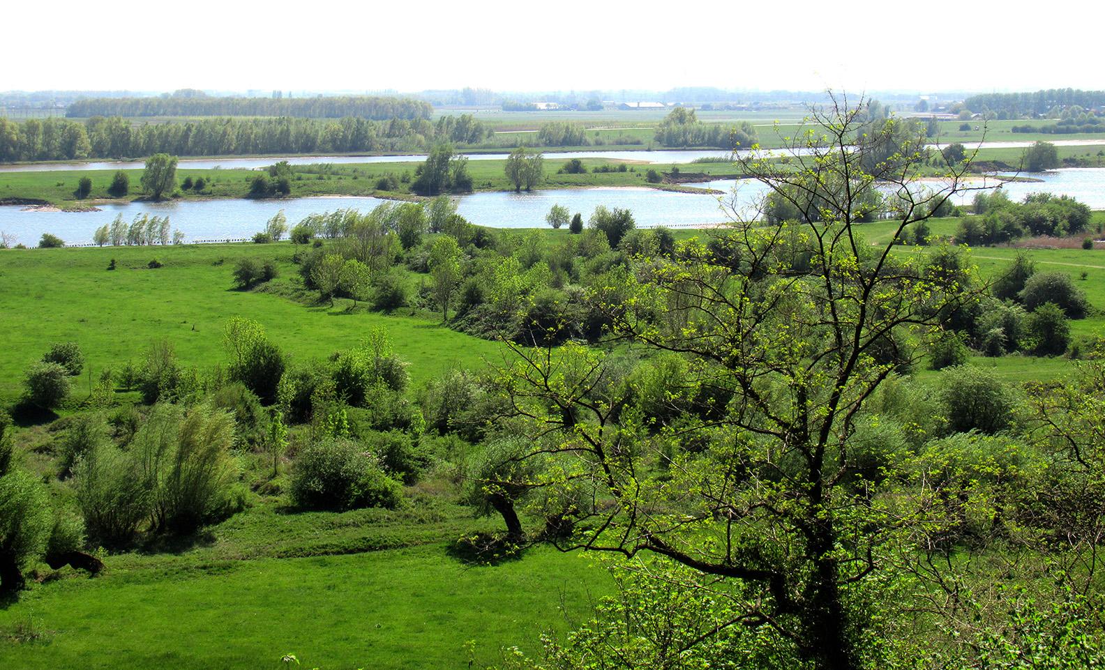 Een prachtig uitzicht over de Rijn en de Betuwe - Foto: ©Fransien Fraanje