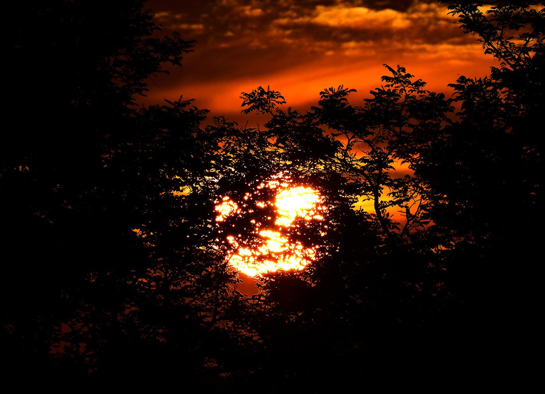 En aan de andere kant scheen de zon tussen de bomen door - Foto: © Louis Fraanje