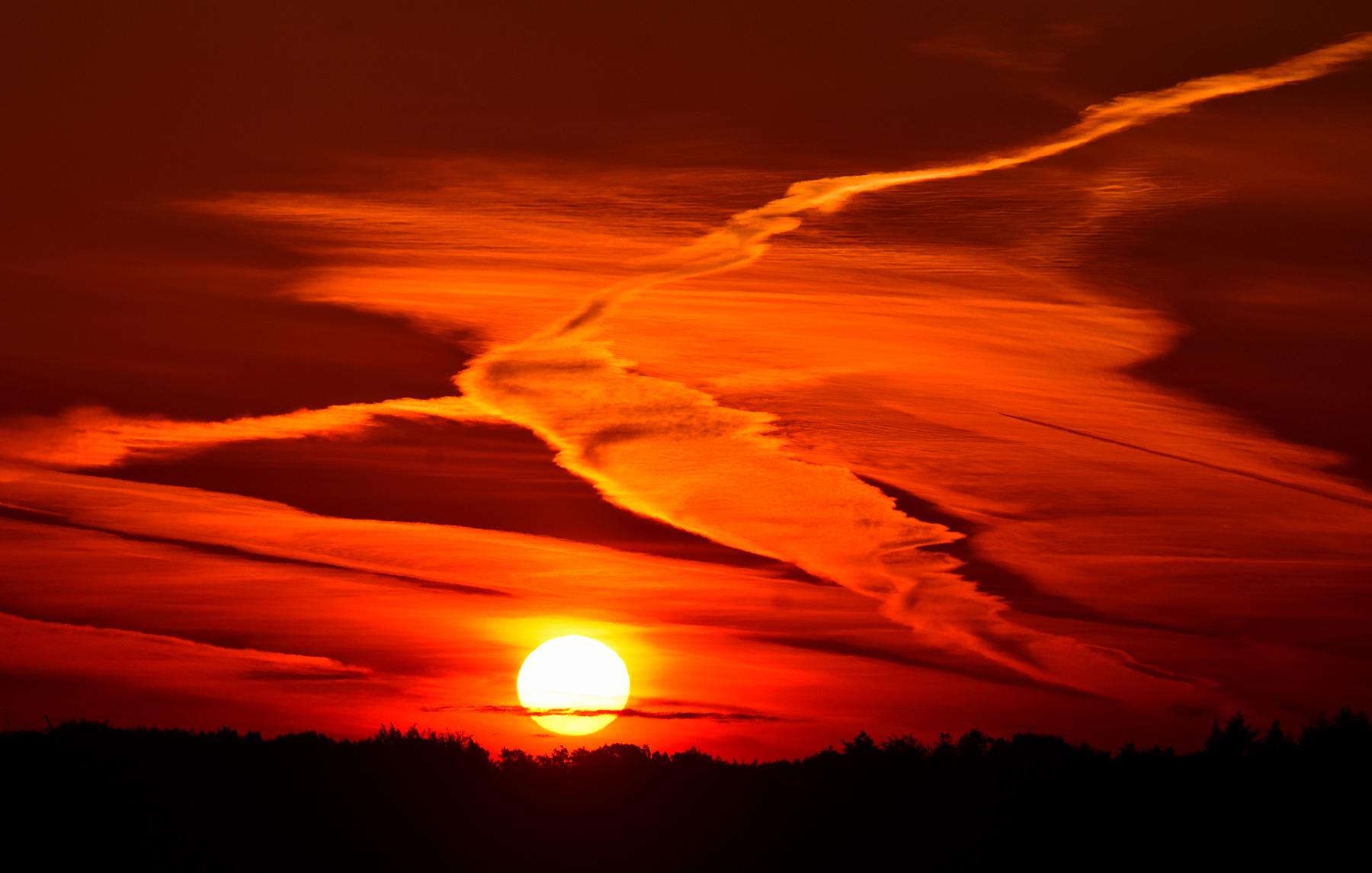 Het lijkt wel of een gevleugelde persoon het licht van de opkomende zon wilde omarmen - Foto:©Louis Fraanje