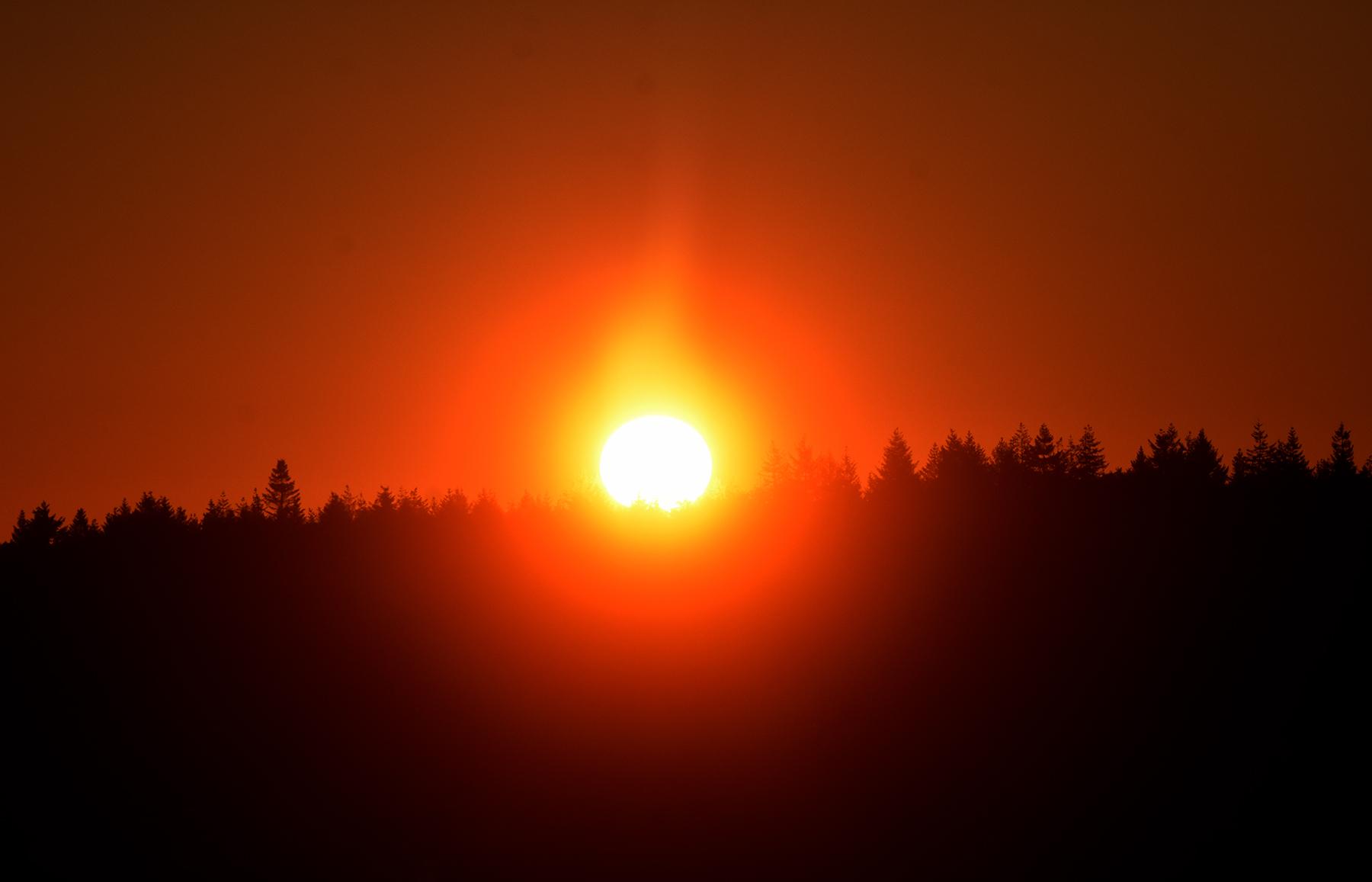 Om 06.00 uur verscheen de morgenzon in al haar glorie boven de bossen van de Veluwe - Foto: ©Louis Fraanje .
