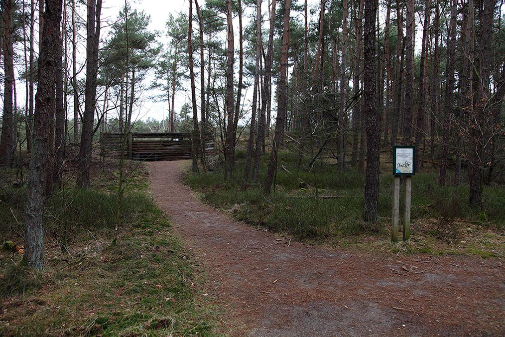 Is er misschien een wildobservatieplaats nodig? - Foto: Anja Arentzen